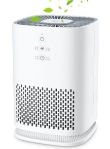 Elechomes Air Purifier for Home with True HEPA Filter - Best Air Purifier under 100 Dollars