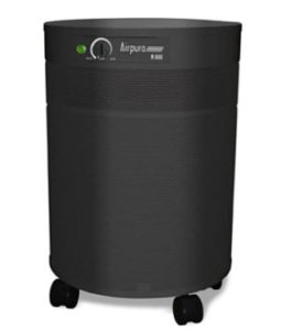 Airpura Industries V600 Air Purifier - Best Air Purifier for Chemicals and Paint Fumes - Best Air Purifier for Paint Fumes