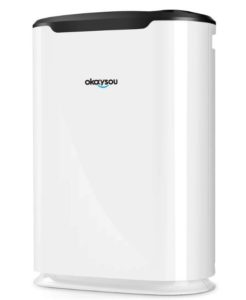 Okaysou AirMax8L Medical Grade Ultra-Duo Air Purifier - Best Air Purifier for Chemicals and Paint Fumes