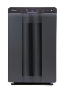 Winix 5500-2 Air Purifier with True HEPA - Best Air Purifier for Chemicals and Paint Fumes