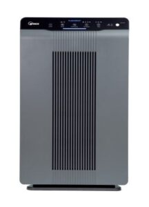 Best Air Purifier for Kitchen - Winix 5300-2 Air Purifier with True HEPA