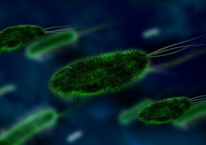 Indoor Air Pollutants and Their Sources - Bacteria